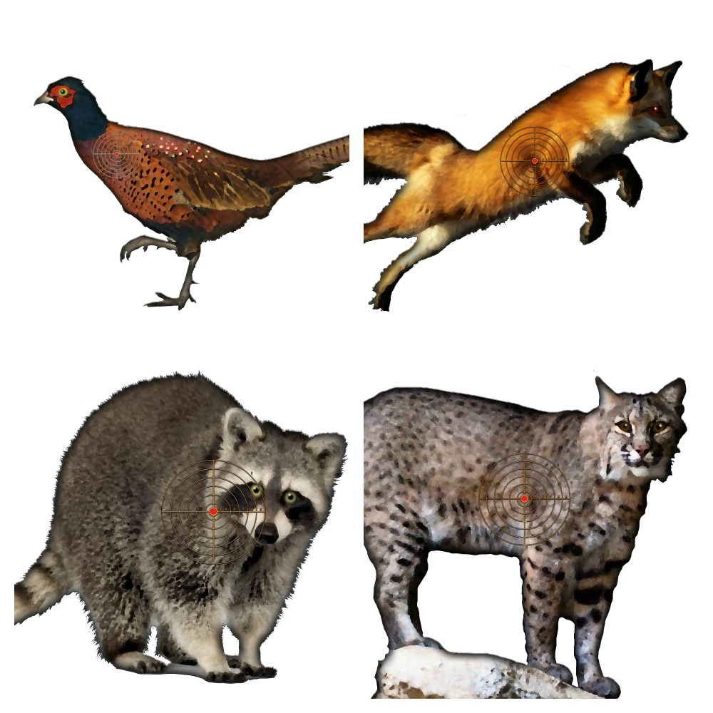 It is a picture of Sly Printable Animal Targets