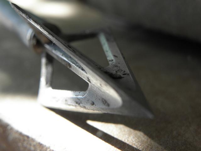 The 5 Best Broadheads: Fixed Blade