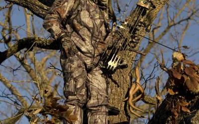 Essential Accessories For Bow Hunting