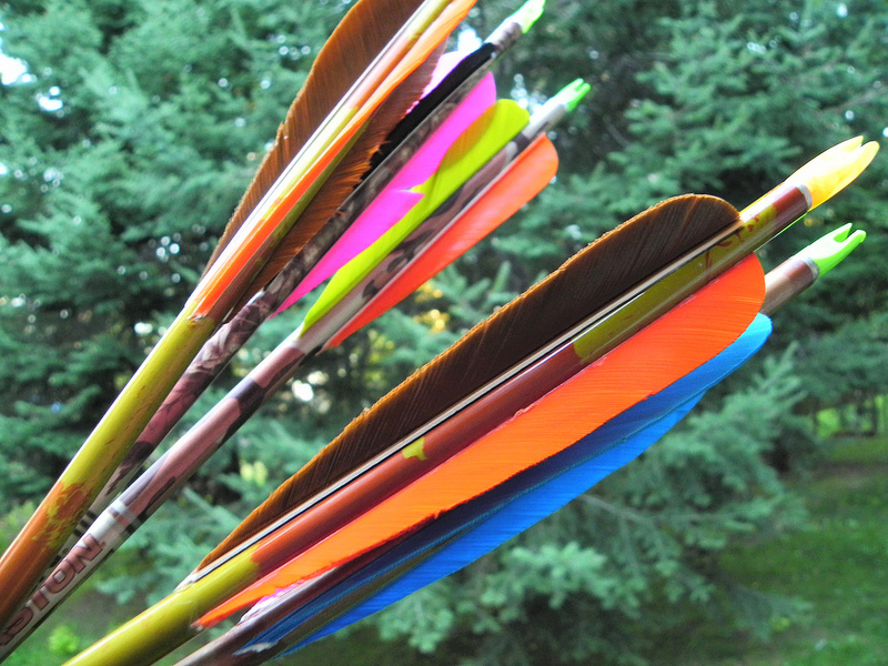 The 5 Best Carbon Arrows