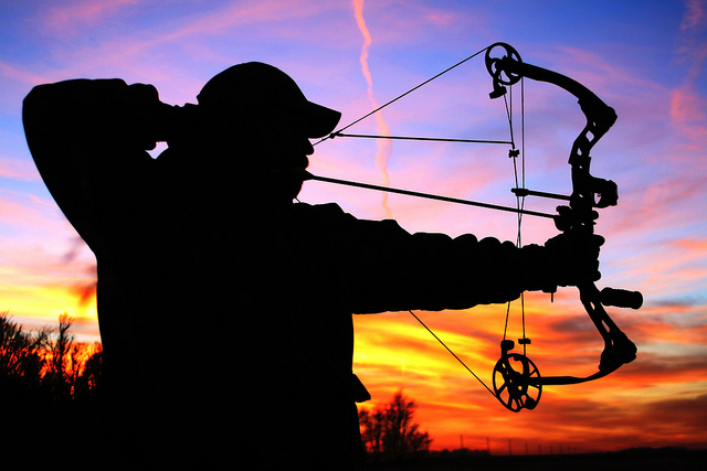 Beginners Guide To Bow Hunting