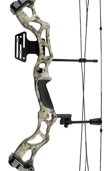 The Best Compound Bow 2017